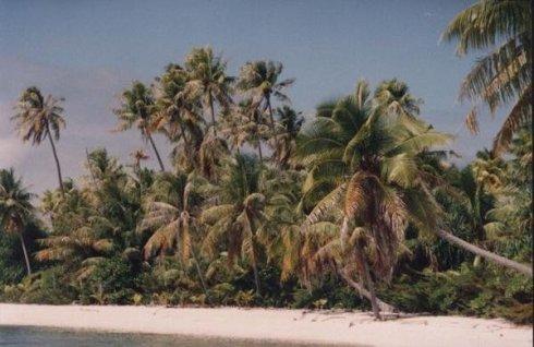 french polynesia 2
